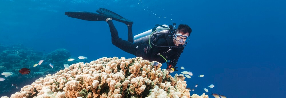 Beginner Diving on the Great Barrier Reef