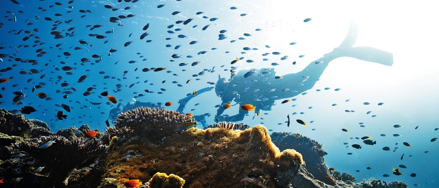 What is the best time to visit the Great Barrier Reef?