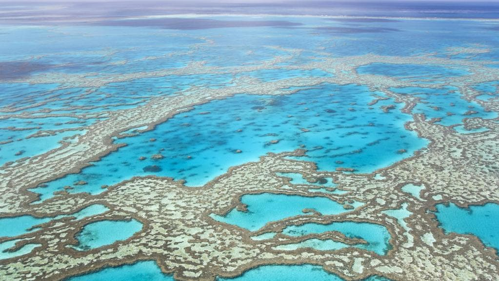 How was the Great Barrier Reef formed?