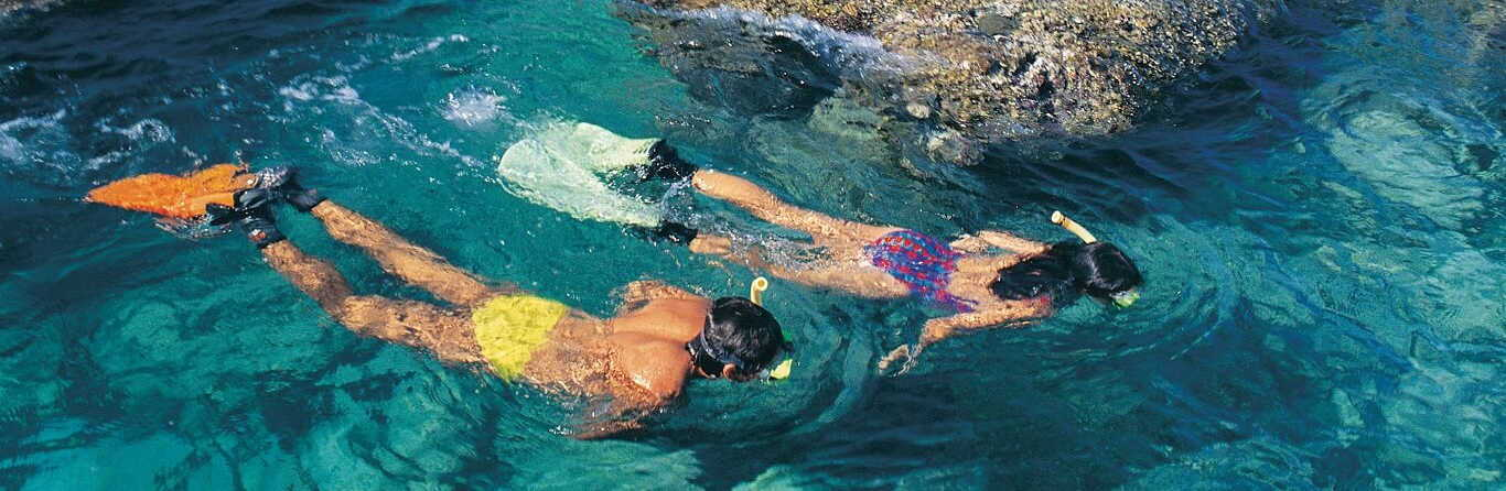 Great Barrier Reef Tour $115