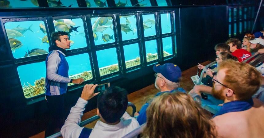 underwater observatory moore reef
