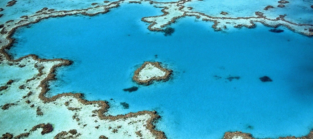 The Great Eight of the Great Barrier Reef