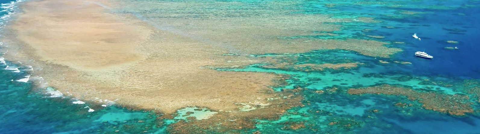 Great Barrier Reef Virtual Tour