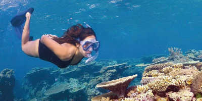 3 Day Great Barrier Reef Liveaboard Tour $690