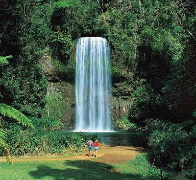 Cairns Tours
