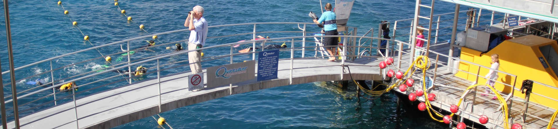 Why You Should Go on a Great Barrier Reef Pontoon